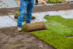 adult laying sod in jeans