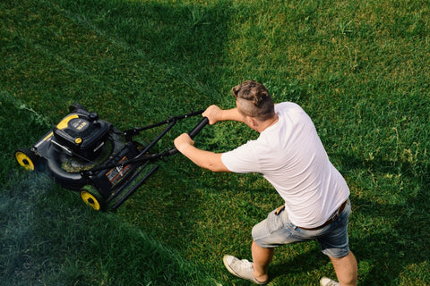 Man Mowing a Green Lawn