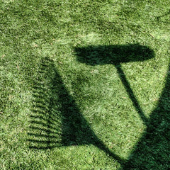 Shadow of a Rake and Broom on Green Grass to be Dethatched