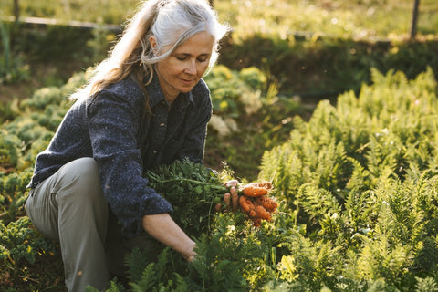 Woman gardening carrots while squatting