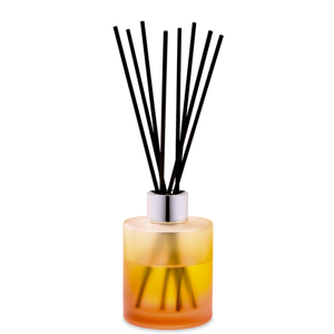 Maison Berger Coconut Monoi Reed Diffuser