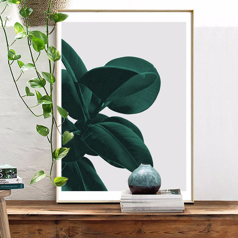 Green House Plant Canvas Print