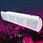LED Max300 Grow Light Starter Kit