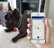 THE F1 FINDER PET TRACKER FULLY INSTALLED