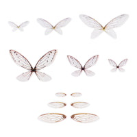 IDEA-OLOGY  Transparent Wings