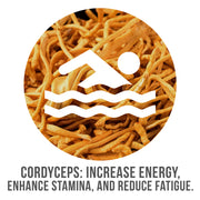 Cordyceps: Increase Energy, Enhance Stamina, and Reduce Fatigue