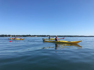 Tandem Kayak Rental Package- Five 2-Hour Rentals