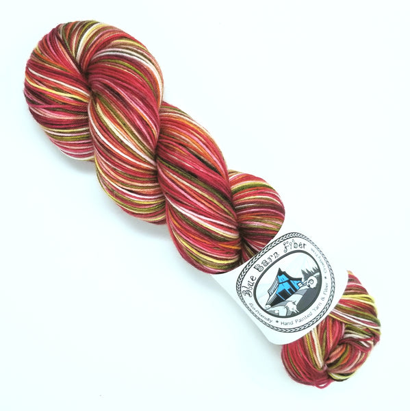 Skinbow Zebrafish- Hand dyed yarn - Merino Fingering red brown green pink