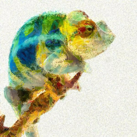 Art Print -High Quality- spray paint - chamelion lizard -  choose your size