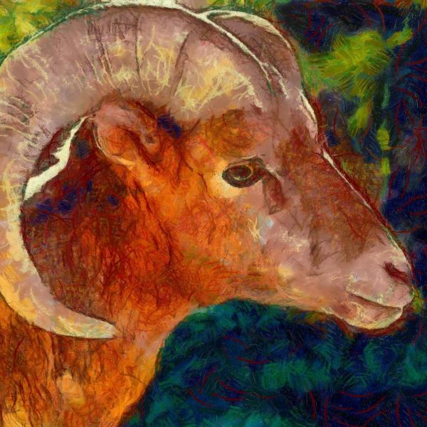 Art Print -High Quality- Oil Painting- Bighorn Sheep