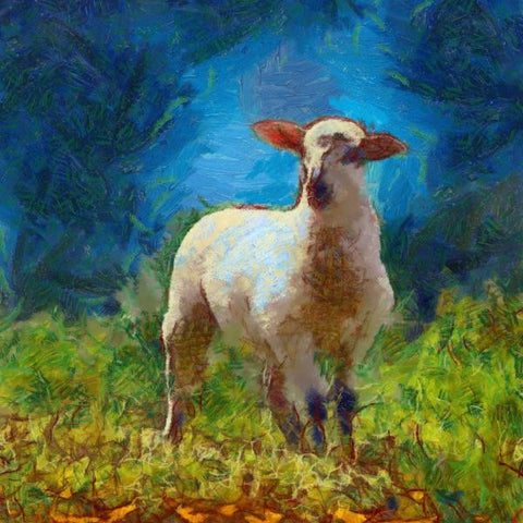 Art Print -High Quality- Oil Painting- Beautiful Lamb
