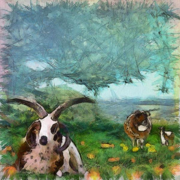 Art Print -High Quality- Watercolor and Pencil Painting- Jacob Sheep - choose your size