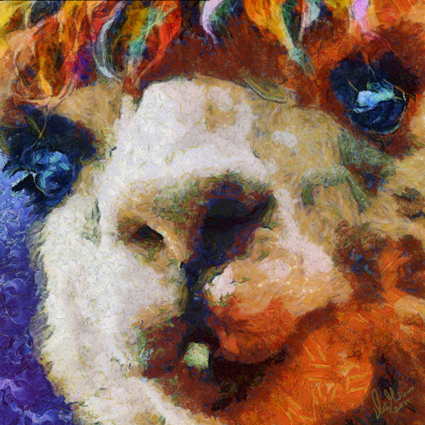 Art Print -High Quality- Acrylic on Canvas- Alpaca Smile -