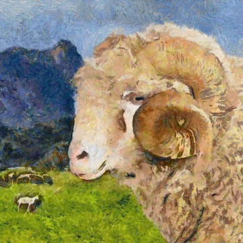 Art Print -High Quality- Oil and Pastels Painting- Merino Sheep in Australia- choose your size