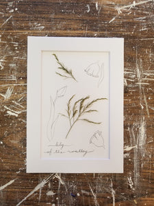 "May Birth Flower- Lily of the Valley- 5"" x 7"""