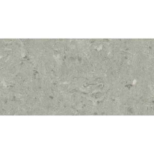 300x600mm <br> Winter Mist 280 <br> $33/m2 (inc gst)