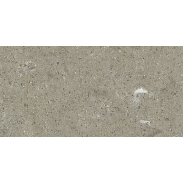 300x600mm <br> Delfino Grey 911 <br> $33/m2 (inc gst)