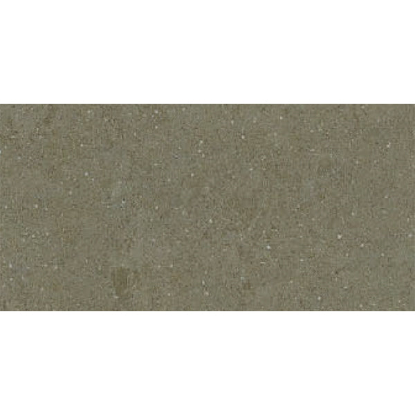 300x600mm <br> Spring Taupe 901 <br> $33/m2 (inc gst)