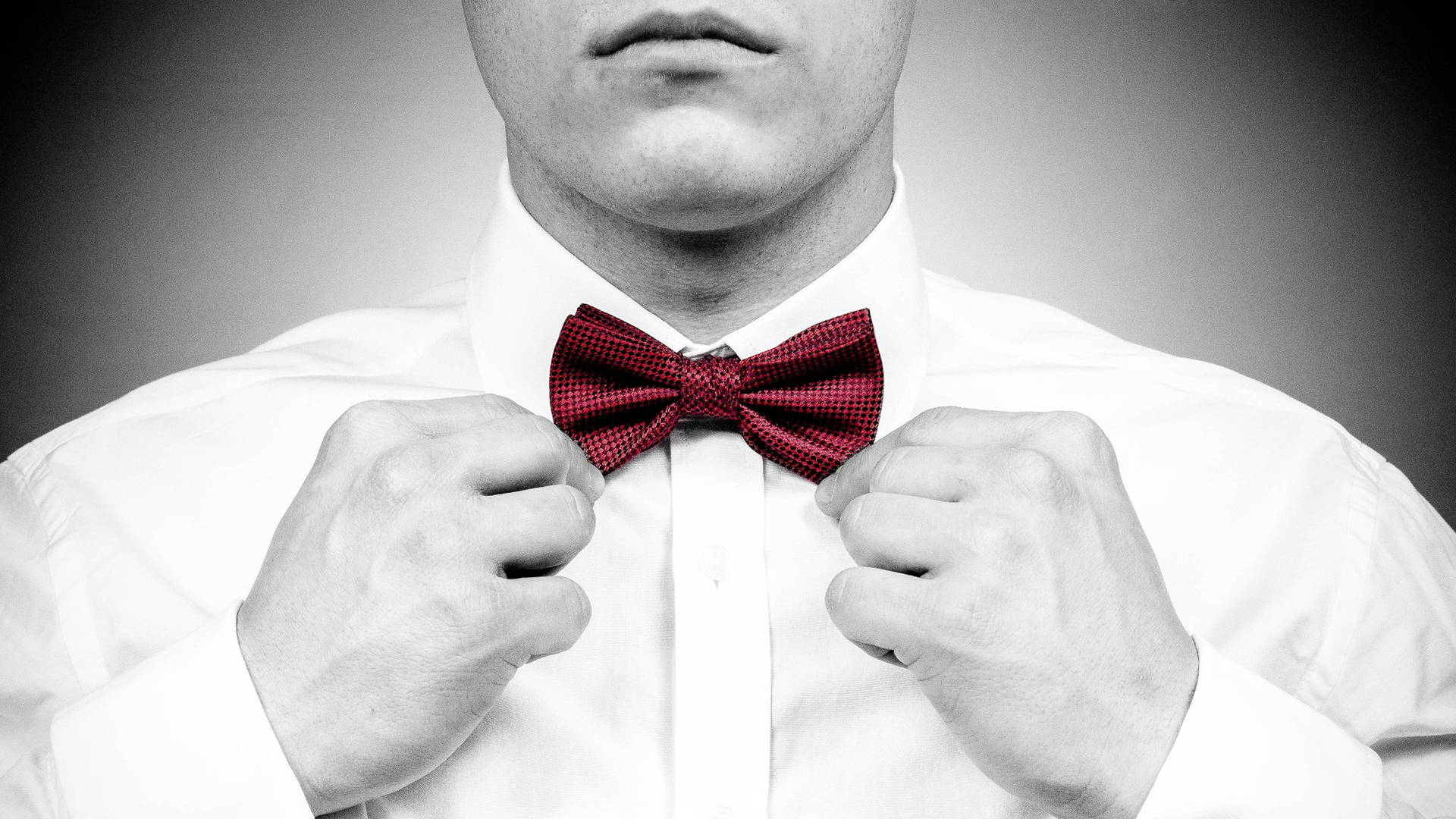 What To Know When Wearing Bow Ties: Bow Ties Style and Fashion