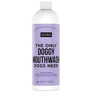 Natural Rapport Doggy Mouth Wash Water Additive to Freshen Bad Breath and Promote Dog Dental Health No Toothbrush or Toothpaste (16 fl oz.)