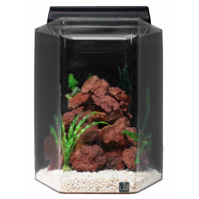 SeaClear 20 gal Deluxe Hexagon Acrylic Aquarium Combo Set, 15 by 15 by 24