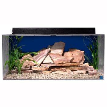 SeaClear 40 gal Show Acrylic Aquarium Junior Executive Kit, 36 by 15 by 16
