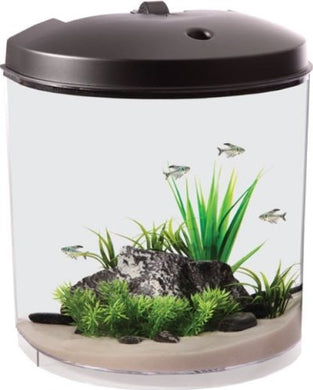 Koller Products AquaTunes 3.5 Gallon Fish Aquarium Sleep Sound Machine, Pre-Recorded Natures Sound, MP3 Player and Speaker Included - Kaulana Pets