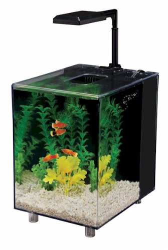 Penn Plax Prism Nano Aquarium Kit With Filter and LED Light, Desktop Size, Black, 2 Gallon