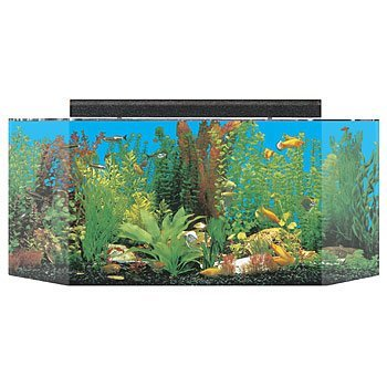 SeaClear 26 gal Flat Back Hexagon Acrylic Aquarium Combo Set, 36 by 12 by 16