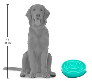 Slow Feeder Dog Bowl Fun Feeder Stop Bloat Bowl for Dogs by Outward Hound, Large, Teal - Kaulana Pets