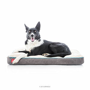 BRINDLE Soft Memory Foam Dog Bed with Removable Washable Cover - 34in x 22in - Khaki - Kaulana Pets