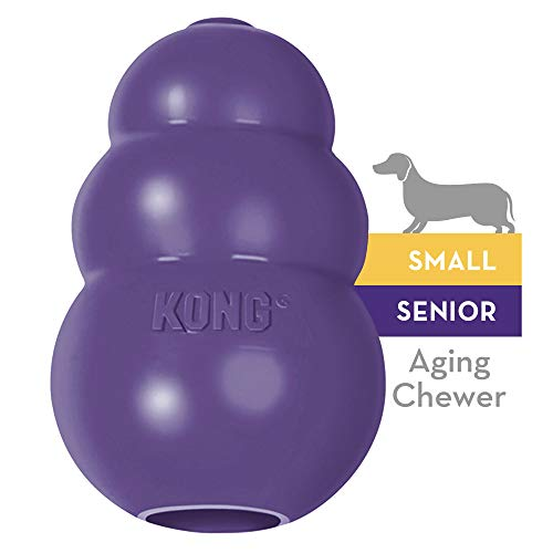 KONG Senior Small
