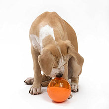 OurPets IQ Treat Ball Interactive Food Dispensing Dog Toy - Kaulana Pets