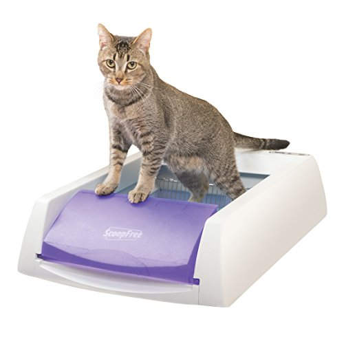 PetSafe ScoopFree Original Self-Cleaning Cat Litter Box, Automatic with Disposable Litter Tray and Blue Crystal Cat Litter, 2 Color Options - Kaulana Pets