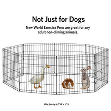 "New World Pet Products B550-24 Foldable Exercise Pet Playpen, Black, Small/24"" x 24"" - Kaulana Pets"