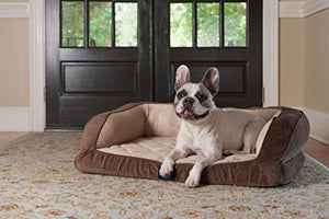 Serta Orthopedic Quilted Couch - Kaulana Pets