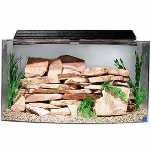 "SeaClear 46 gal Bowfront Acrylic Aquarium Combo Set, 36 by 16.5 by 20"", Clear Aquarium  Kaulana Pets"