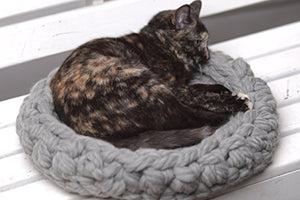 Chunky Knit Cat Bed cat bed  Kaulana Pets