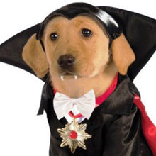 Classic Movie Monsters Pet Costume, Small, Dracula - Kaulana Pets