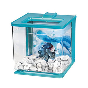 Marina EZ Care Betta Kit, Blue - Kaulana Pets