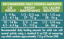Purina ONE Indoor Advantage Adult Premium Cat Food, 22 Pound - Kaulana Pets