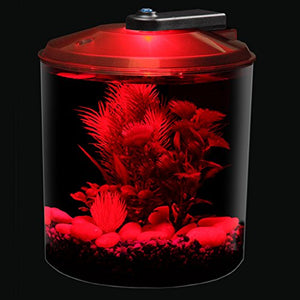 Koller Products AquaScene 1.5 Gallon 360 Fish Tank with LED Lighting - Kaulana Pets