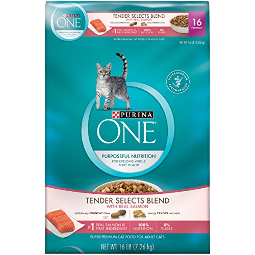 Purina ONE Tender Selects Blend With Real Salmon Dry Cat Food - Kaulana Pets