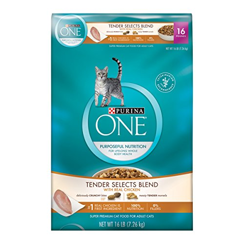 Purina ONE Tender Selects Blend With Real Chicken Dry Cat Food - Kaulana Pets