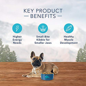Blue Buffalo Wilderness Rocky Mountain Recipe High Protein Grain Free, Natural Adult Small Breed Dry Dog Food, Red Meat 10-lb - Kaulana Pets