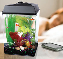 Koller Products AquaTunes 2.5-Gallon Fish Aquarium Sleep Sound Machine, Pre-Recorded Natures Sound, MP3 Player and Speaker Included - Kaulana Pets