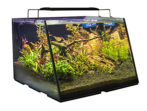 Lifegard Aquatics R800207 Full-View 7 Gallon Aquarium with Built-in Back Filter - Kaulana Pets
