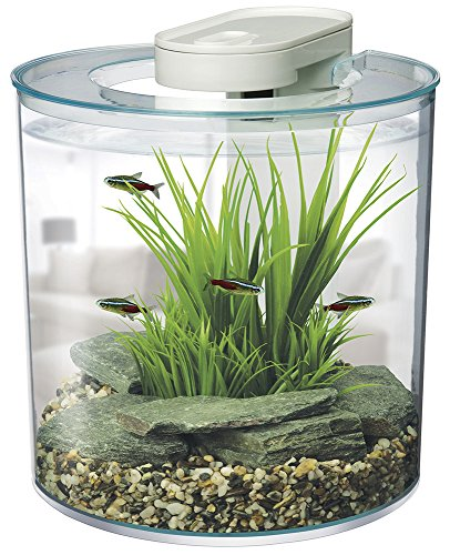 Marina 360-Degree Aquarium Starter Kit - Kaulana Pets