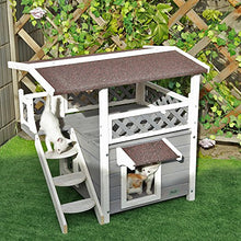 Petsfit 2-Story Outdoor Weatherproof Cat House with Stairs, 1-Year Warranty - Kaulana Pets