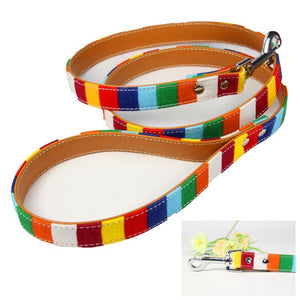 Leather Leash with Color Canvas Accents - Kaulana Pets